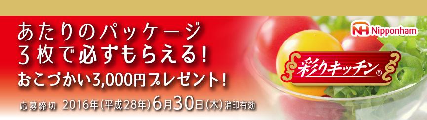 ニッポンハム おこづかい3000円がもらえるキャンペーン